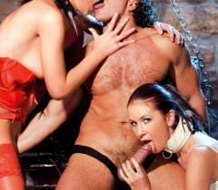На бесплатных секс фото шальные сучки показывают знойные тела и трахаются с чуваком