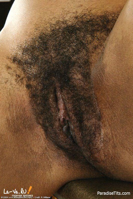 На умопомрачительных фото сочная негритянка показывает крупным планом свою эротичную волосатую пизду
